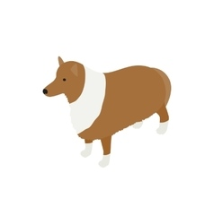 Collie dog icon isometric 3d style vector image vector image