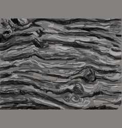 texture and pattern of bark vector image vector image
