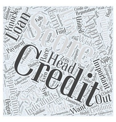average credit score us Word Cloud Concept vector image