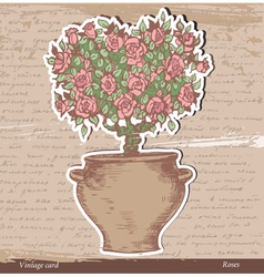 Bush of roses vector