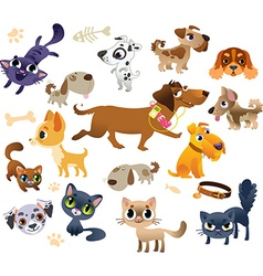 Collection of cats and dogs vector image vector image