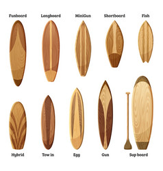 different sizes and designs of wood surfboards vector image