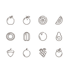 fresh nutrition harvest fruits icons set line vector image