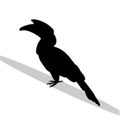 Hornbill bird black silhouette animal vector