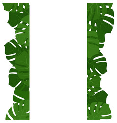 Tropical monstera leaves frame vector