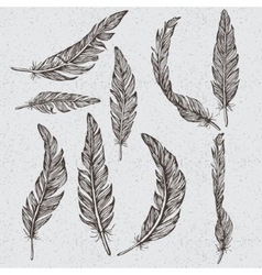 Collection of the monochrome feathers vector image vector image