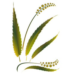 Grass weed vector
