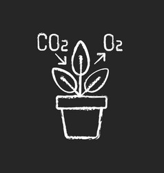 Air purifying plant chalk white icon on black vector