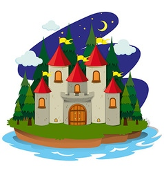 Castle on island at night vector image