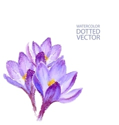 Dotted watercolor purple flowers vector
