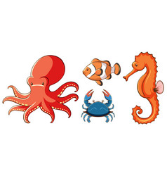 Isolated picture sea creatures vector