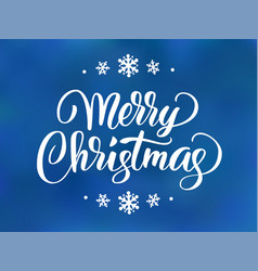 Merry christmas and happy new year text holiday vector