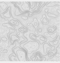 seamless topographic map contour background topo vector image