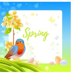 Spring frame with cherry blossom flower robin vector