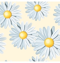 White camomile seamless vector