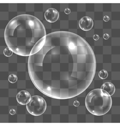 Transparent soap bubbles vector image vector image