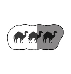 Camels animals silhouettes concept vector