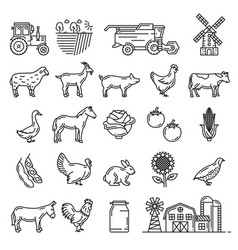 cattle farm animals and agriculture farmer items vector image