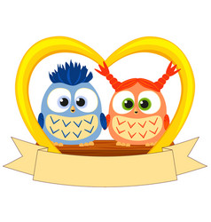 colorful valentine day poster with young owl vector image