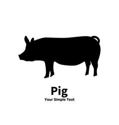 pet pig vector image