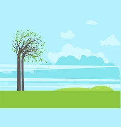 trees green grass and sky vector image