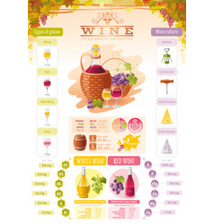wine infographic icons alcohol drink icon vector image