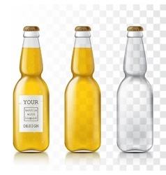 Realistic transparent glass bottles vector image