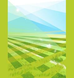 beautiful pattern fresh green grass vector image