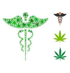 caduceus composition of marijuana vector image
