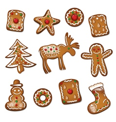 Gingerbread cookie xmas vector image