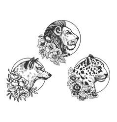 lion wolf leopard head animal sketch vector image