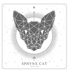 Magic witchcraft card with polygonal sphynx cat vector