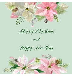 New Year and Christmas Card Flowers Poinsettia vector image