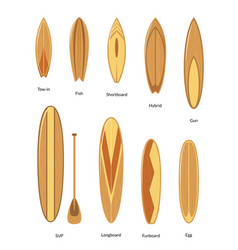 surfboards with wooden texture set surfers vector image