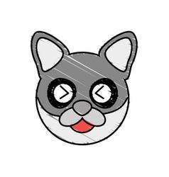 cute raccoon drawing animal vector image