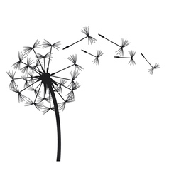 dandelion in the wind vector image vector image