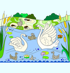 childrens color book cartoon family of swan on vector image