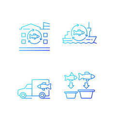 Fish processing and transportation gradient vector