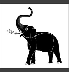 Image of an elephant vector