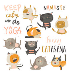 set of cute cats in yoga asana postures vector image