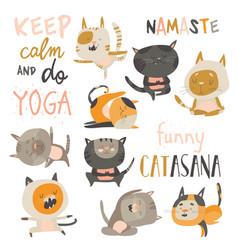 Set of cute cats in yoga asana postures vector
