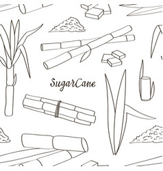 sugar cane icons pattern vector image