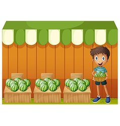 A boy holding a basket of watermelons vector image