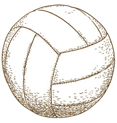 Engraving of volleyball ball vector