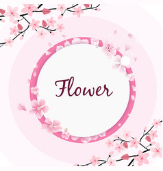 flower circle frame sakura pink background vector image