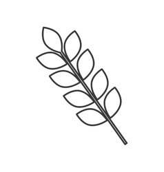 Leaves plant nature design vector