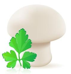 Mushroom champignon vector