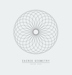 sacred geometry line element flower life vector image