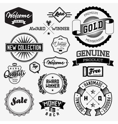 Set of vintage bagdes labels and stamps vector image vector image