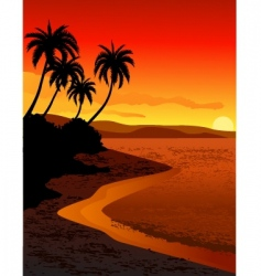 tropical beach vector image